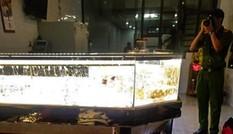Cảnh kẻ trộm dùng búa đập tủ kính lấy vàng khi chủ tiệm đang xem bóng đá