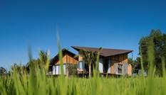 Độc đáo nhà dưỡng già 30 tỷ đồng giữa đồng lúa