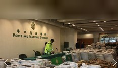Hong Kong phát hiện lượng vảy tê tê hàng trăm tỷ đồng trên đường về Việt Nam