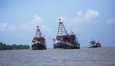 Việt Nam bác bỏ lệnh cấm đánh bắt cá đơn phương của Trung Quốc trên biển Đông