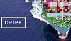 Doanh nghiệp Việt cần chuẩn bị để tận dụng CPTPP