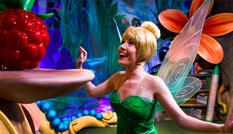Có thể bạn từng đến Disney World, nhưng những bí mật này thì chưa chắc bạn đã biết!