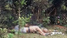 Lạng Sơn: Phát hiện thi thể đàn ông trong khu vườn ươm