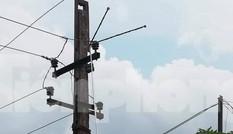 Bẫy chim bằng sào inox, người đàn ông bị điện giật chết