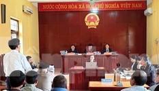 Gần 40 người dân hầu tòa vì chặt hơn 7.000 cây bạch đàn