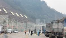 Loại 87 lái xe ra khỏi 'đội chuyên trách' sau lùm xùm nâng giá chở hàng sang Trung Quốc