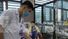 Lạng Sơn: Nhiều người bị rắn độc cắn
