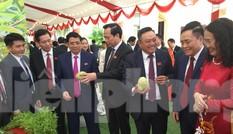 Sản vật quý, độc đáo mừng Đại hội Đảng bộ tỉnh Lạng Sơn