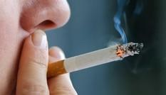 Khói thuốc lá độc hại như thế nào đến cơ thể người?