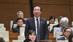 Bao giờ bỏ chứng chỉ ngoại ngữ, tin học như Bộ trưởng đã 'hứa'?