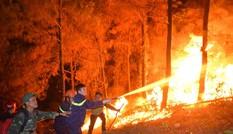 Cháy rừng ở Hà Tĩnh: Biển lửa lan rộng, uy hiếp đường dây 500KV
