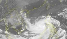 Bão số 9 gây mưa lớn từ Nghệ An đến Khánh Hòa