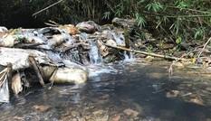 Cử tri Hà Nội lo ngại về bụi mịn PM2.5 và nước sạch nhiễm bẩn