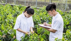 Học viện Nông nghiệp Việt Nam tuyển gần 6.000 chỉ tiêu