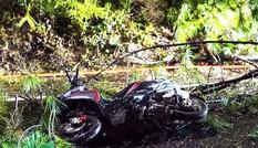 Nhiều cây ngã đổ trên đường, 2 người bị thương ở đèo Prenn
