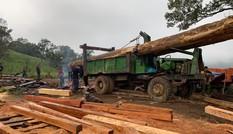 Khởi tố nhóm đối tượng phá rừng khu vực giáp ranh Đắk Lắk – Khánh Hòa