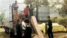 Khởi tố vụ 93m3 gỗ lậu tập kết sát đồn biên phòng