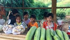 Độc đáo 'chợ sản vật 10 nghìn' chênh vênh trên đèo Măng Rơi