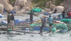 Khánh Hòa yêu cầu ứng cứu hai người dân mắc kẹt trên biển trước giờ bão số 6 đổ bộ