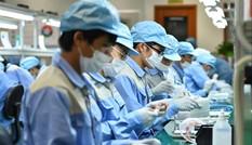 Việt Nam tham gia CPTPP: Lo cho các doanh nghiệp nhỏ và vừa