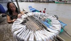Việt Nam trở thành hình mẫu giảm nghèo