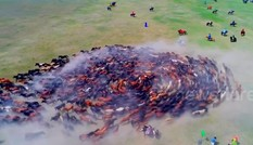 Sửng sốt cảnh vó ngựa cuốn tung cát bụi tại lễ hội ở Mông Cổ