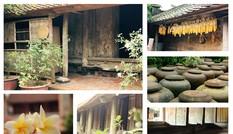 Chiêm ngưỡng vẻ đẹp di sản vẹn nguyên ở làng cổ Đường Lâm