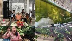 NSND Hồng Vân hé lộ biệt thự rộng lớn có khế trăm tuổi, cá trê 'thành tinh' giữa Sài Gòn