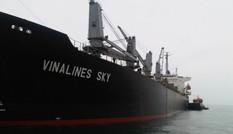 Vinalines tổn thất lớn với vụ kiện 3 triệu USD