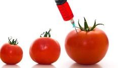 Ưu nhược điểm của thực phẩm GMO từ góc độ ăn chay