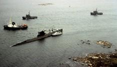 Đàn cá khiến Thụy Điển lo sợ bị tàu ngầm Liên Xô tấn công