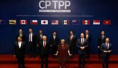 [Infographics] Các dấu mốc đàm phán TPP - CPTPP