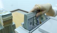 Tỷ giá trung tâm lập đỉnh mới, USD ngân hàng lên sát 23.400 đồng