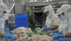 Tìm đường tiêu thụ nội địa cho mặt hàng xuất khẩu tỷ USD