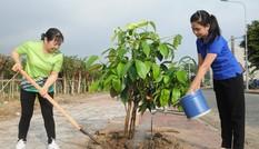 Chạy Marathon, trồng cây xanh 'chống biến đổi khí hậu'