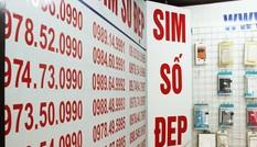 Số điện thoại đẹp, tên miền internet sẽ được đấu giá thế nào?