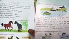 Sách Tiếng Việt 1 Cánh Diều dùng 'thuật ngữ trừu tượng, tình huống gượng ép'