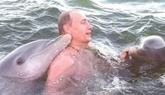 Ông Putin được cá heo hôn tới tấp ở khu nghỉ dưỡng Cuba