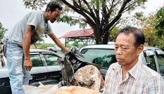 Ngư dân Thái Lan phát hiện khối u nghi là 'bãi nôn cá voi', có giá 74 tỉ đồng