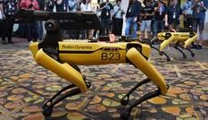 Mỹ thả chó robot vào nơi làm việc