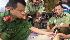 Truy tìm chủ sở hữu lô ngà voi vừa bị bắt tại Bình Định