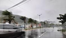 Bình Định cho học sinh nghỉ học từ sáng 10/11 phòng tránh bão số 12
