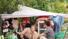 Lũ lớn ở Bình Định, hơn 8.500 nhà dân bị ngập