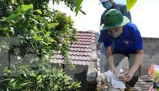Tổ phản ứng nhanh 'Áo xanh' giúp dân chống bão số 9