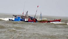 Một tàu cá Bình Định bị kẹt gần tâm bão số 8 giật cấp 15 trên biển Đông