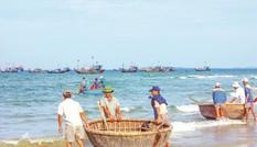 Đồng quản lý nghề cá giúp khai thác, bảo vệ nguồi lợi thuỷ sản bền vững