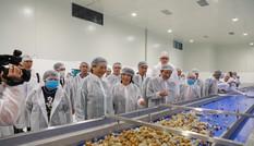 Khánh thành nhà máy chế biến hoa quả công nghệ hàng đầu thế giới tại Sơn La