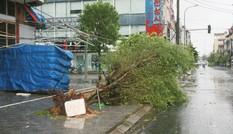 11 người chết do mưa lũ sau bão số 3