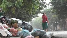 Kinh hãi với núi rác dài hàng trăm mét ở Hà Nội