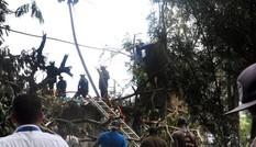 Bản tin 8H: Tìm thấy hộp đen vụ máy bay rơi khiến hơn100 người chết